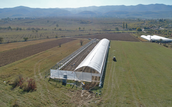 Arranging an irrigation system in a strawberry greenhouse
